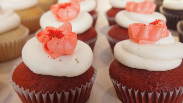 Chicago's Premiere Cupcake Boutique