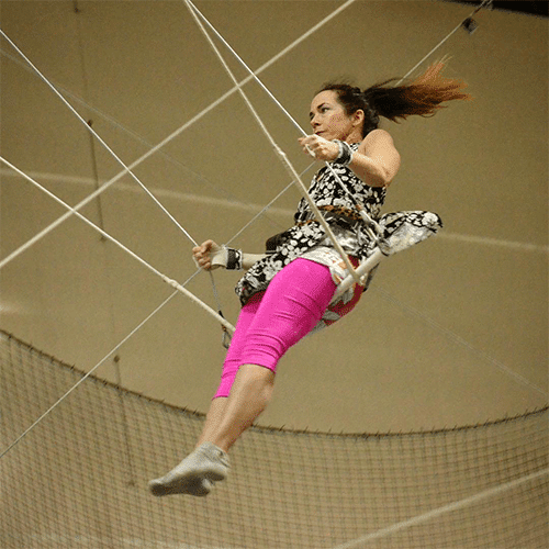Chicago trapeze classes