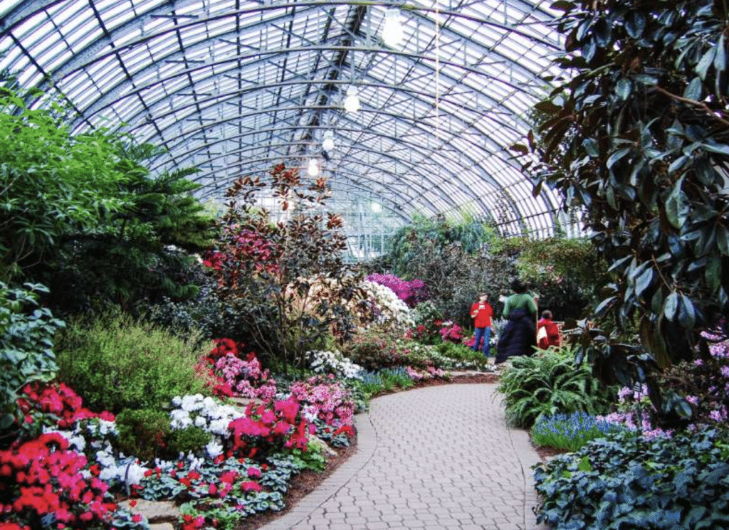 Indoor greenhouse Chicago